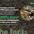 1080-facts-insects-v1